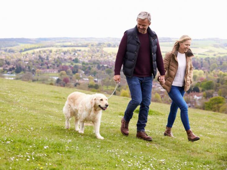 Notable benefits of doing daily long walks